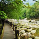 蓬萊生態農場-仙山民宿 木屋二人房#4